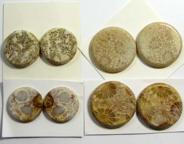 86 CTS PAIRS NATURAL  CORAL FOSSIL STONES MS1053