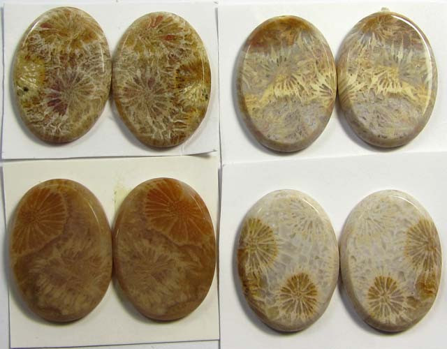 116 CTS PAIRS NATURAL  CORAL FOSSIL STONES MS1055