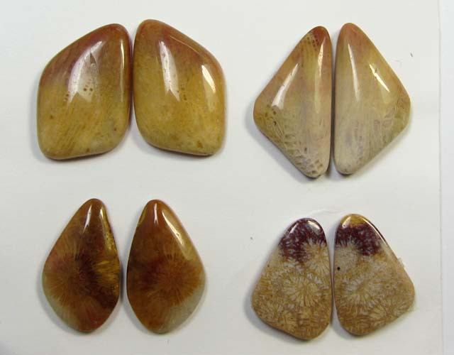 50 CTS PAIRS NATURAL  CORAL FOSSIL STONES MS1065