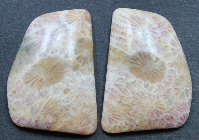 29.30 CTS CORAL PAIR NATURAL STONE PERFECT FOR EARRINGS