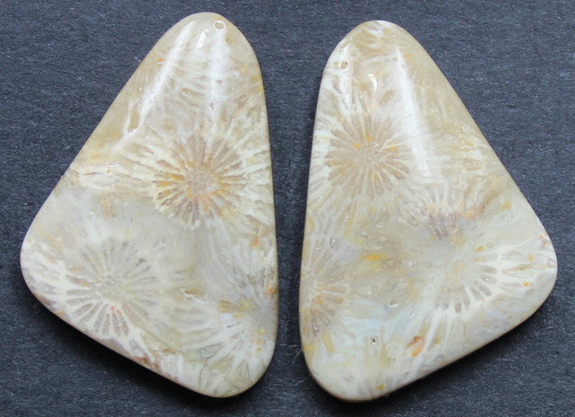 18.35 CTS CORAL PAIR NATURAL STONE PERFECT FOR EARRINGS