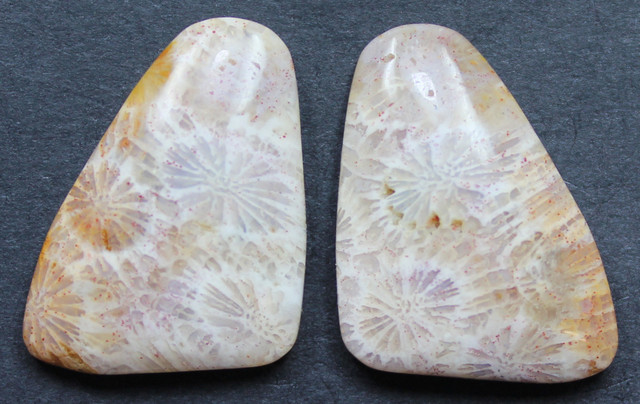 21.50 CTS CORAL PAIR NATURAL STONE PERFECT FOR EARRINGS