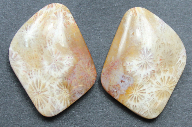 23.55 CTS CORAL PAIR NATURAL STONE PERFECT FOR EARRINGS