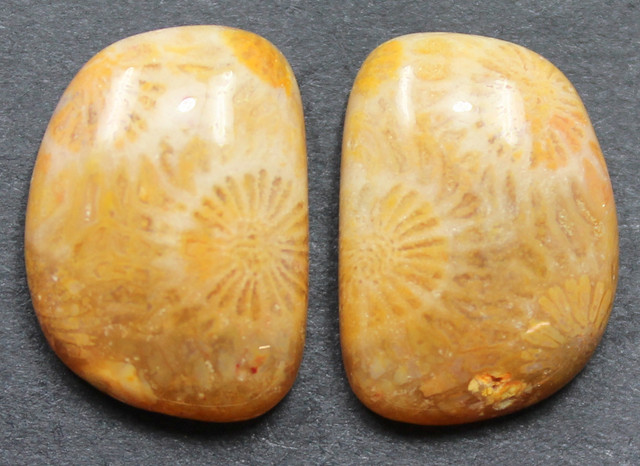 17.85 CTS CORAL PAIR NATURAL STONE PERFECT FOR EARRINGS