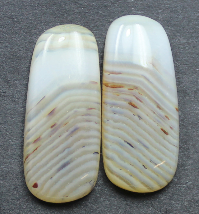16.20 CTS WYOMING AGATE PAIR PERFECT FOR EARRINGS