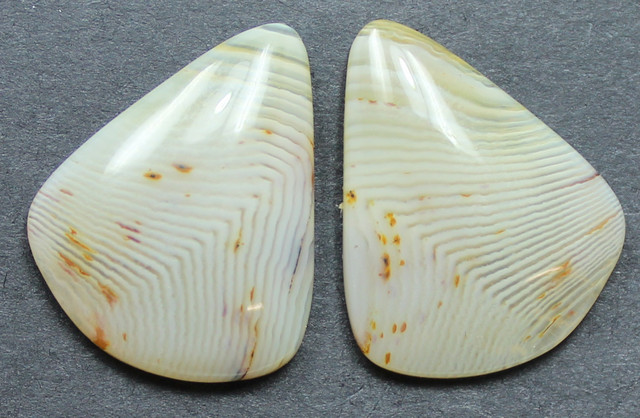 17.80  CTS WYOMING AGATE PAIR PERFECT FOR EARRINGS