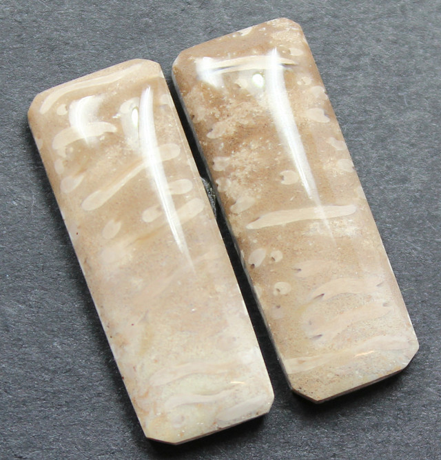 16.35 CTS FOSSIL PALM WOOD PAIR OF STONES