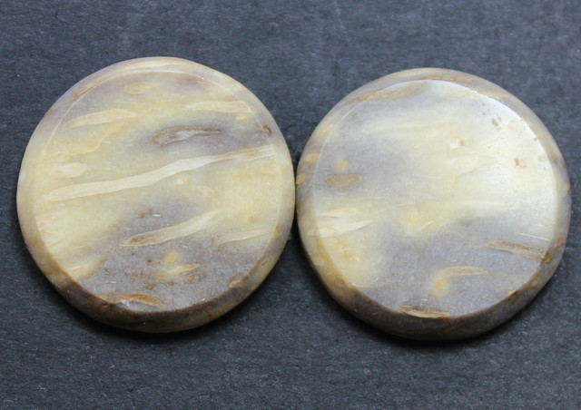 27.00 CTS FOSSIL PALM WOOD PAIR OF STONES