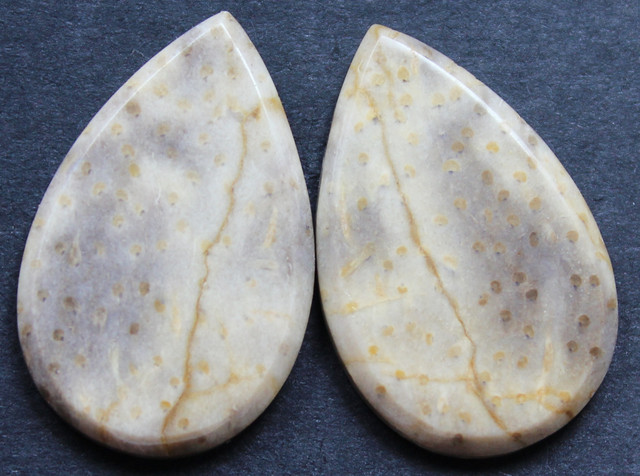 30.30 CTS FOSSIL PALM WOOD PAIR OF STONES