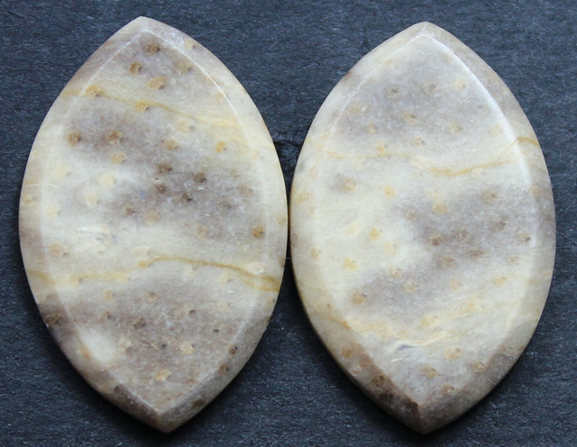 21.85 CTS FOSSIL PALM WOOD PAIR OF STONES