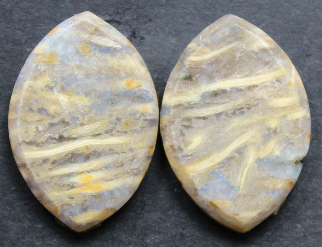 21.55 CTS FOSSIL PALM WOOD PAIR OF STONES