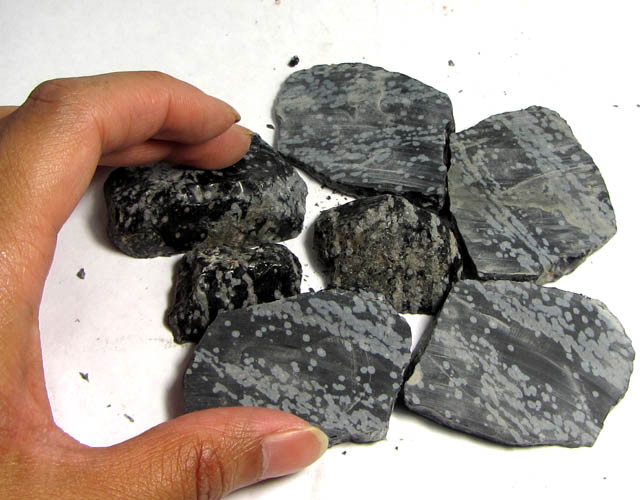 530 CTS PARCEL  SNOWFLAKE OBSIDIAN ROUGH  GG 389