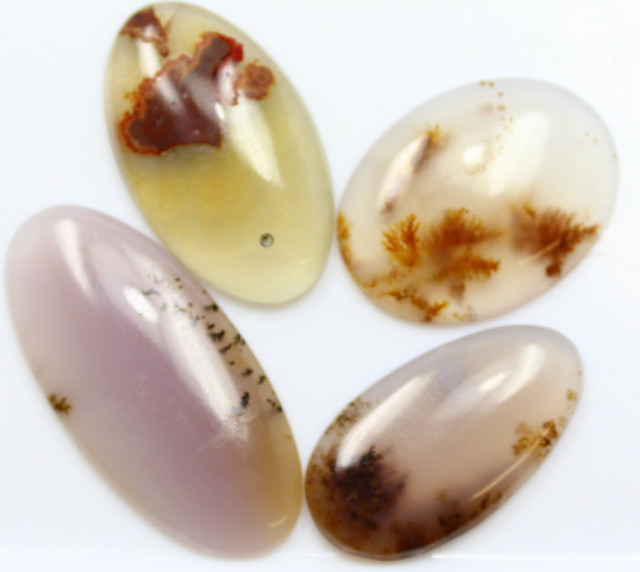 48.50 CTS - 4 PCS DENDRITIC AGATE PARCEL POLISHED STONES
