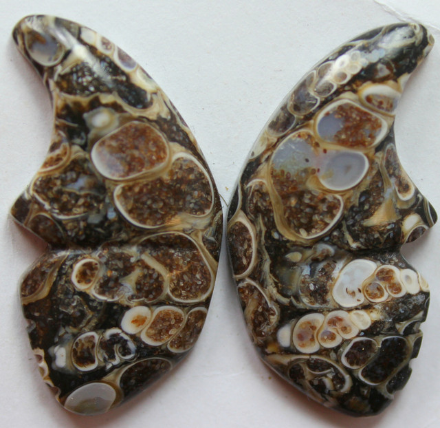39.55 CTS TOP PATTERN CRINOID FOSSIL PAIR BUTTERFLY SHAPE