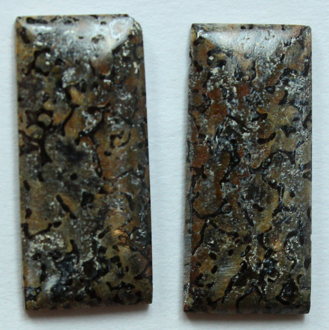DINOSAUR BONE PAIR OF FOSSIL STONES 8.85 CTS