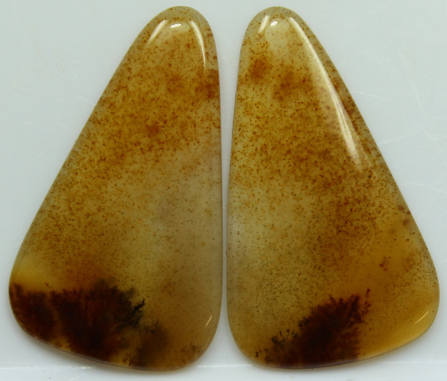 20.90 CTS DENDRITIC AGATE PAIR OF POLISHED STONES