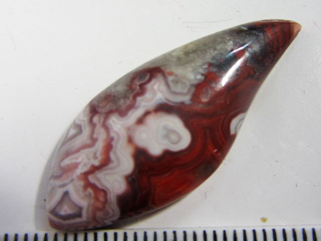19.4 CTS BEAUTIFUL  LACE AGATE MEXICO  MS 1472