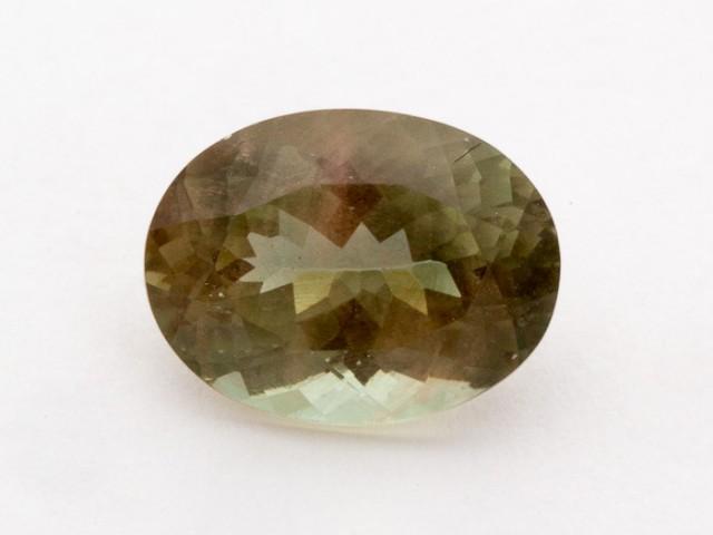 5.6ct Oregon Sunstone, Champagne/Green Oval (S1214)