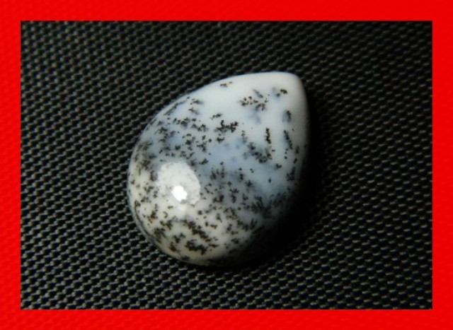 16x12mm 7cts Natural Dendritic Agate Cab Stone Y95