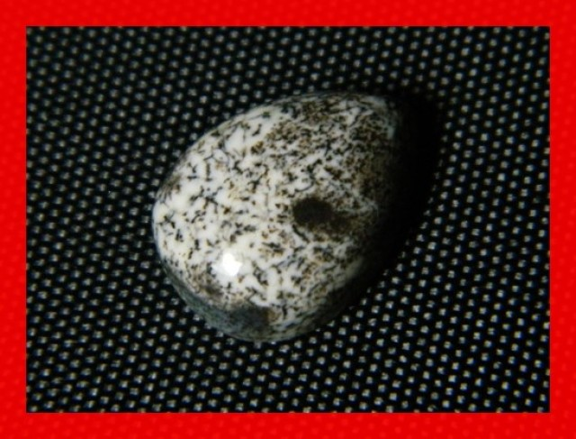 14x10mm 5cts Natural Dendritic Agate Cab Stone Y49