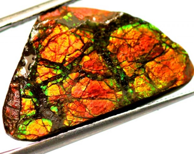 10.45  CTS CANADIAN AMMOLITE PREFINISHED  TBG-276