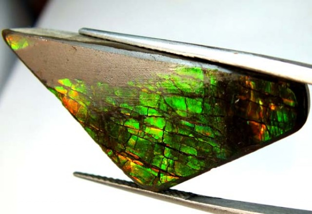 42.95  CTS CANADIAN AMMOLITE PREFINISHED    TBG-286
