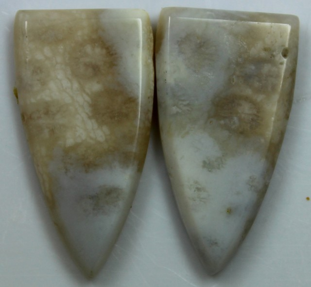 11.65 CTS  PAIR OF POLISHED CORAL NATURAL STONES