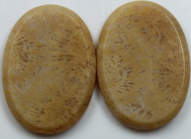 33.00 CTS  PAIR OF POLISHED CORAL NATURAL STONES