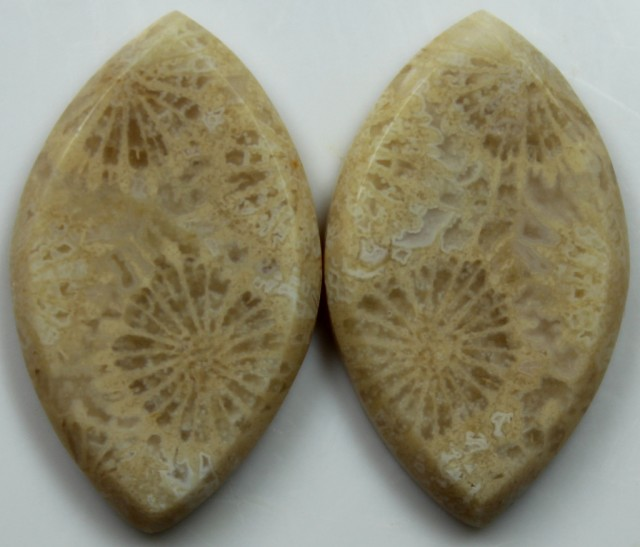 21.65 CTS  PAIR OF POLISHED CORAL NATURAL STONES
