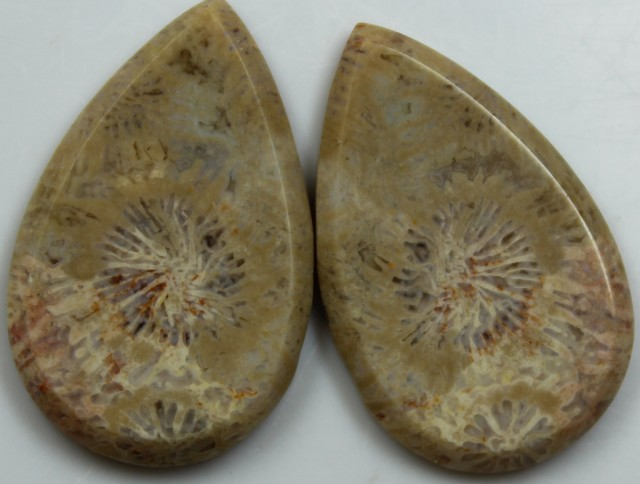 30.65 CTS  PAIR OF POLISHED CORAL NATURAL STONES