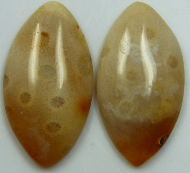 22.80 CTS  PAIR OF POLISHED CORAL NATURAL STONES