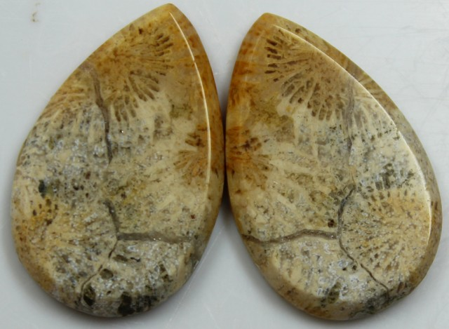 30.50 CTS  PAIR OF POLISHED CORAL NATURAL STONES