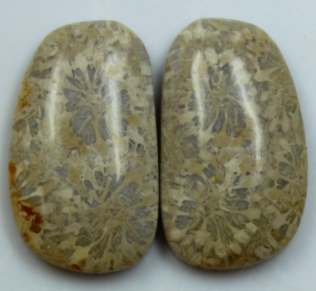 14.85 CTS  PAIR OF POLISHED CORAL NATURAL STONES