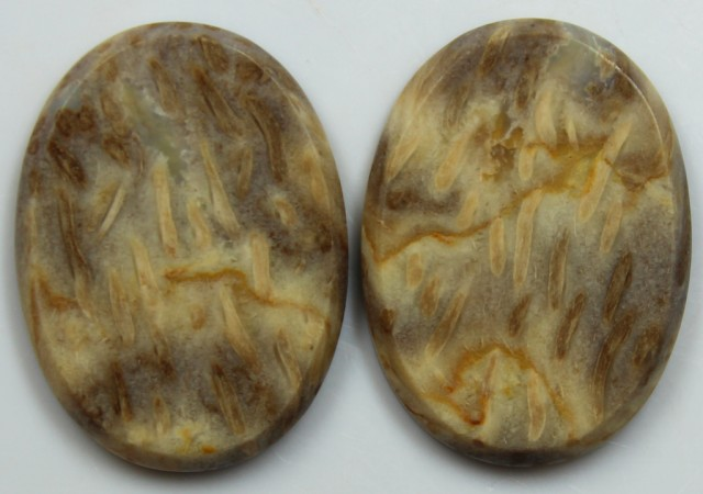 34.55 CTS JASPER PAIR POLISHED STONES GREAT RANGE IN STORE