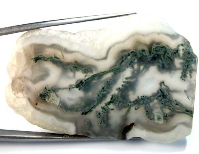 MOSS AGATE DRILLED PENDANT   68 CTS NP-94