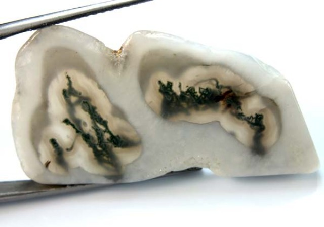 MOSS AGATE DRILLED PENDANT   36.50 CTS NP-100