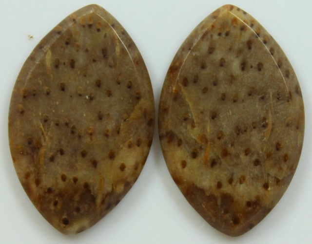 27.20 CTS JASPER PAIR POLISHED STONES GREAT RANGE IN STORE