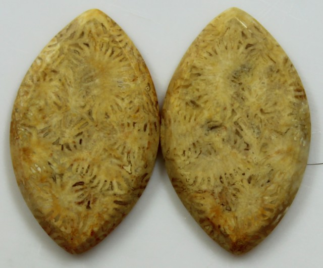 20.40 CTS  PAIR OF POLISHED CORAL NATURAL STONES