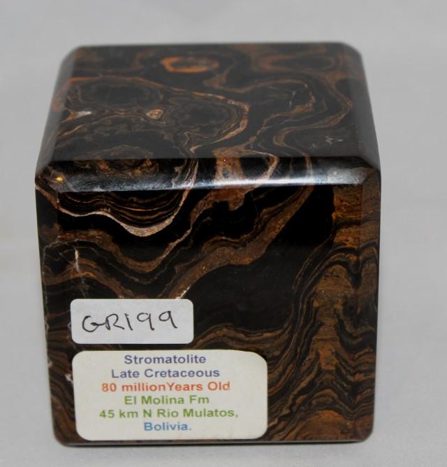 Stromatolite Polished Cube, Bolivia (GR199)