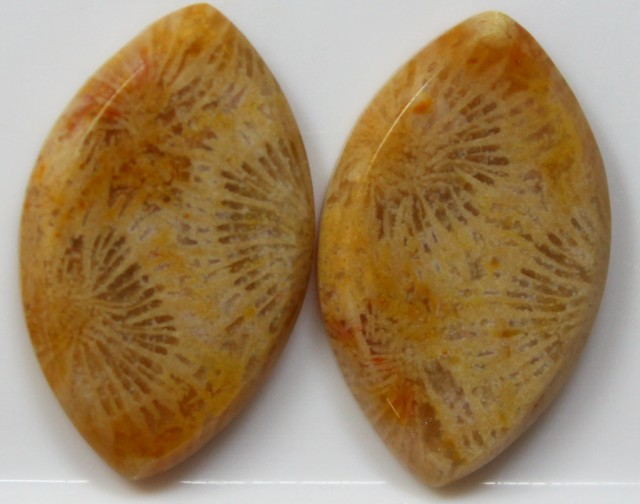 22.05 CTS  PAIR OF POLISHED CORAL NATURAL STONES