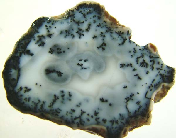 DENDRITIC OPAL -ROUGH  38CTS [MFJP2812]