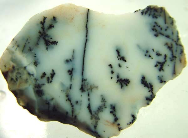DENDRITIC OPAL -ROUGH  48CTS [MFJP2813]