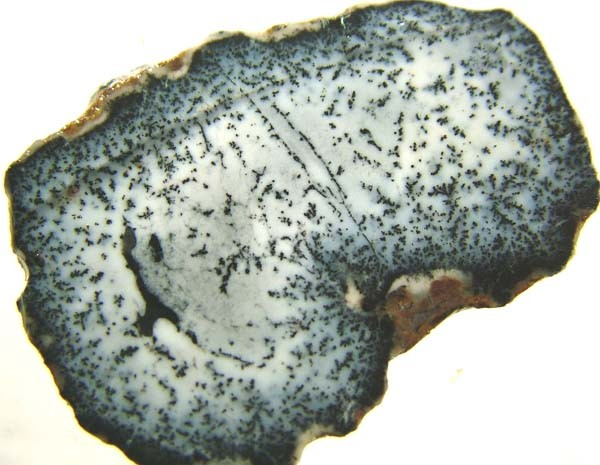 DENDRITIC OPAL -ROUGH  61CTS [MFJP2818]