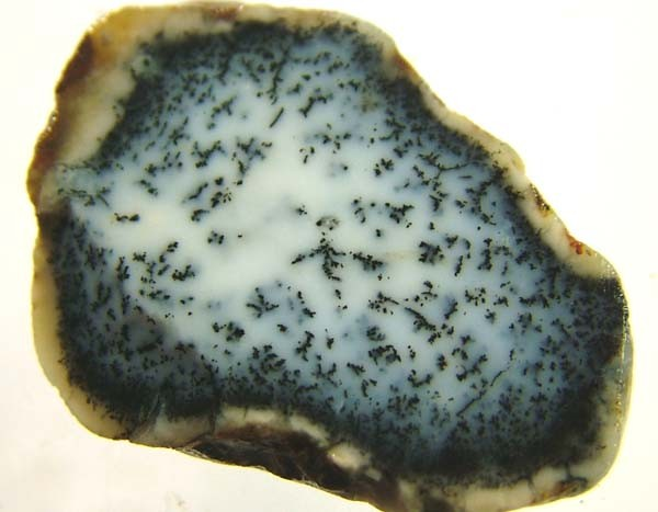 DENDRITIC OPAL -ROUGH  45CTS [MFJP2823]