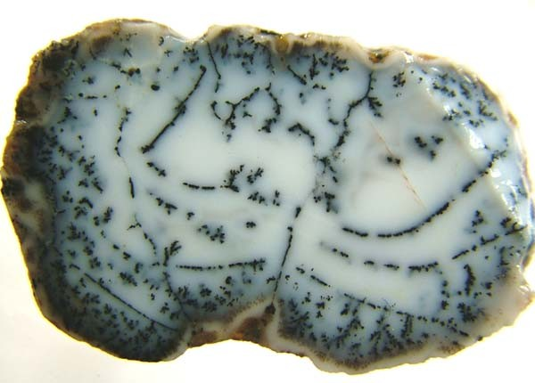 DENDRITIC OPAL -ROUGH  39CTS [MFJP2826]