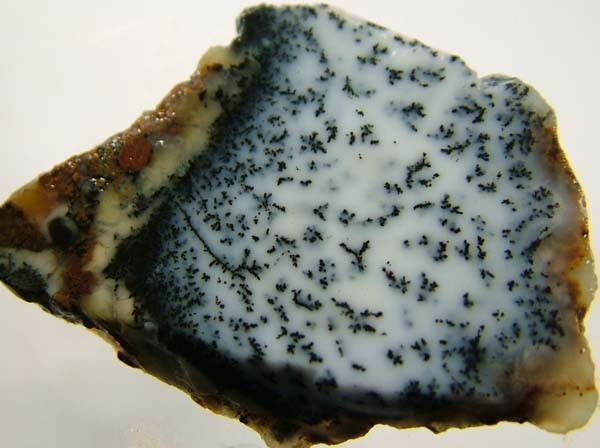 DENDRITIC OPAL -ROUGH  38CTS [MFJP2847]