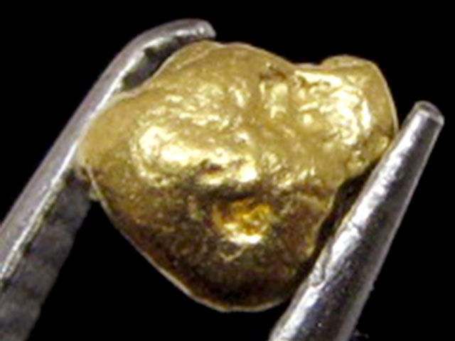 0.53 GRAMS  AUSTRALIAN  GOLD NUGGET    LGN 1203