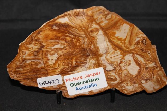 PICTURE JASPER SLICE, QLD Australia (GR427)