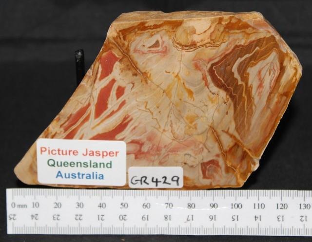 PICTURE JASPER SLICE, QLD Australia (GR429)
