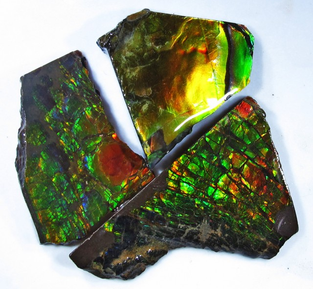 45.05 CTS AMMOLITE  ROUGH PARCEL SPECIMEN FROM CANADA F4757